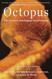 Octopus by Roland C. Anderson