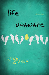 Life Unaware by Cole Gibsen