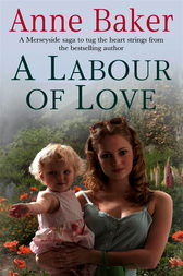 A Labour of Love by Anne Baker
