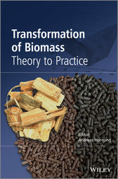 Transformation of Biomass by Andreas Hornung