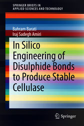 In Silico Engineering of Disulphide Bonds to Produce Stable Cellulase by Bahram Barati