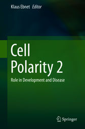 Cell Polarity 2 by Klaus Ebnet