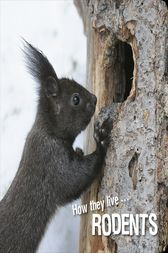 How they live... Rodents by David Withrington