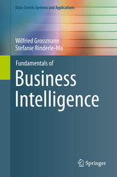 Fundamentals of Business Intelligence by Wilfried Grossmann
