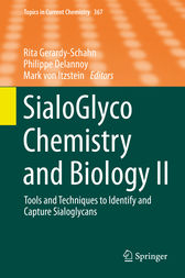 SialoGlyco Chemistry and Biology II by Rita Gerardy-Schahn