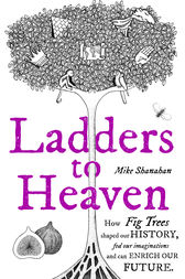 Ladders to Heaven by Mike Shanahan
