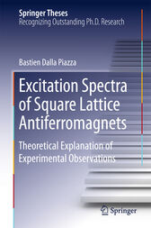 Excitation Spectra of Square Lattice Antiferromagnets by Bastien Dalla Piazza