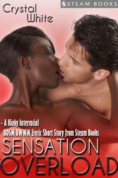 Sensation Overload - A Kinky Interracial BDSM BWWM Erotic Short Story from Steam Books by Crystal White