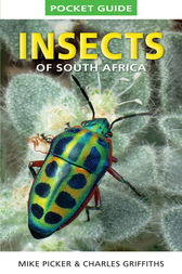 Pocket Guide to Insects of South Africa by Mike Picker