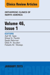 Volume 46, Issue 1, An Issue of Orthopedic Clinics, E-Book by Asif M. Ilyas