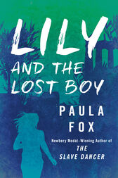 Lily and the Lost Boy by Paula Fox
