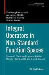 Integral Operators in Non-Standard Function Spaces by Vakhtang Kokilashvili