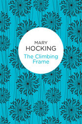 The Climbing Frame by Mary Hocking