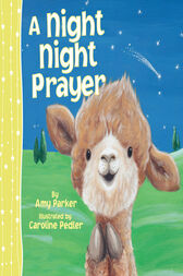 A Night Night Prayer by Amy Parker