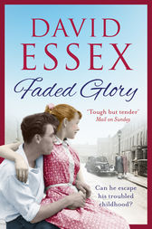 Faded Glory by David Essex