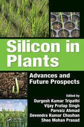 Silicon in Plants by Durgesh Kumar Tripathi